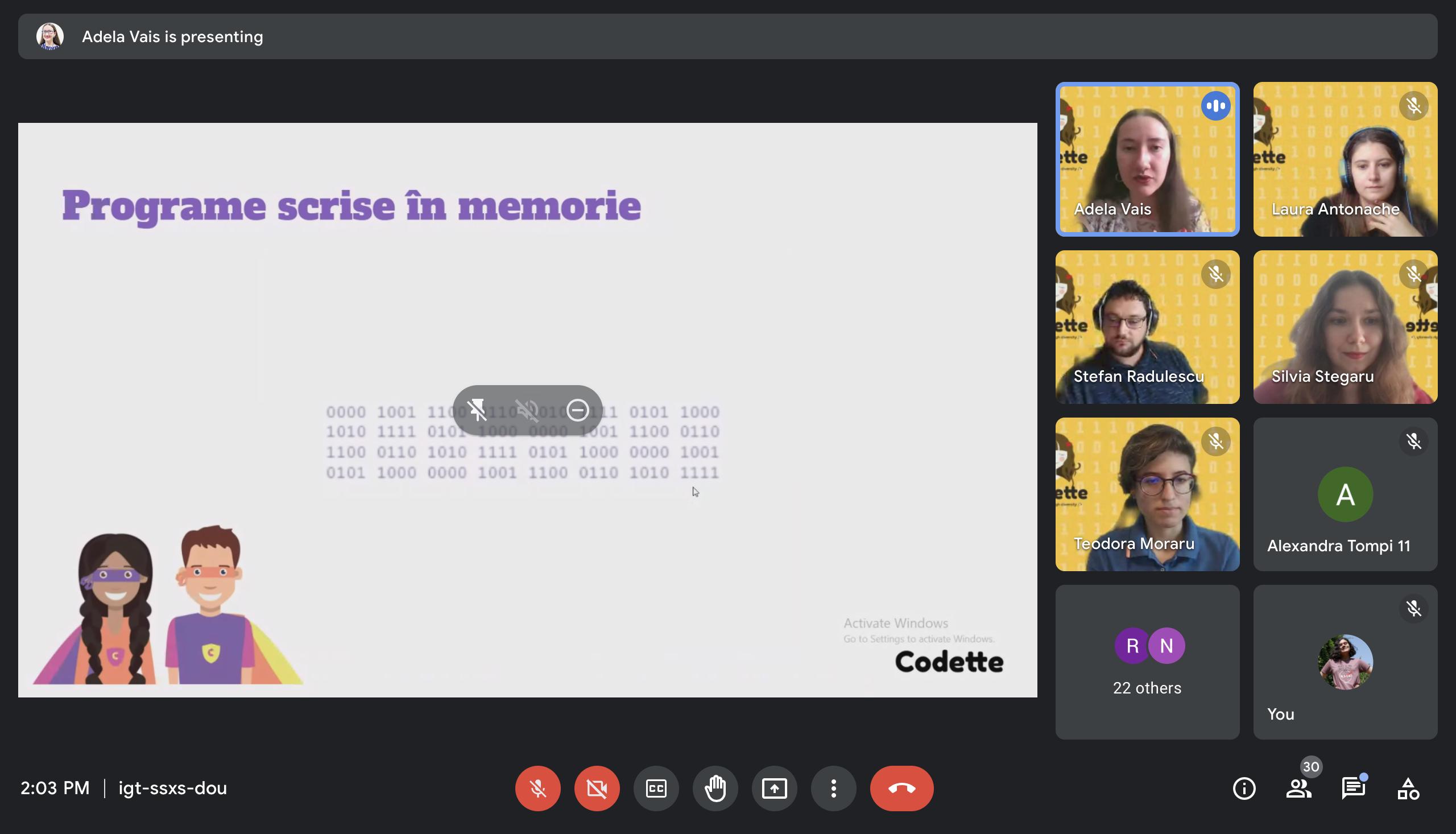 Screenshot din timpul prezentării Adelei Vais, parte din Demo Day